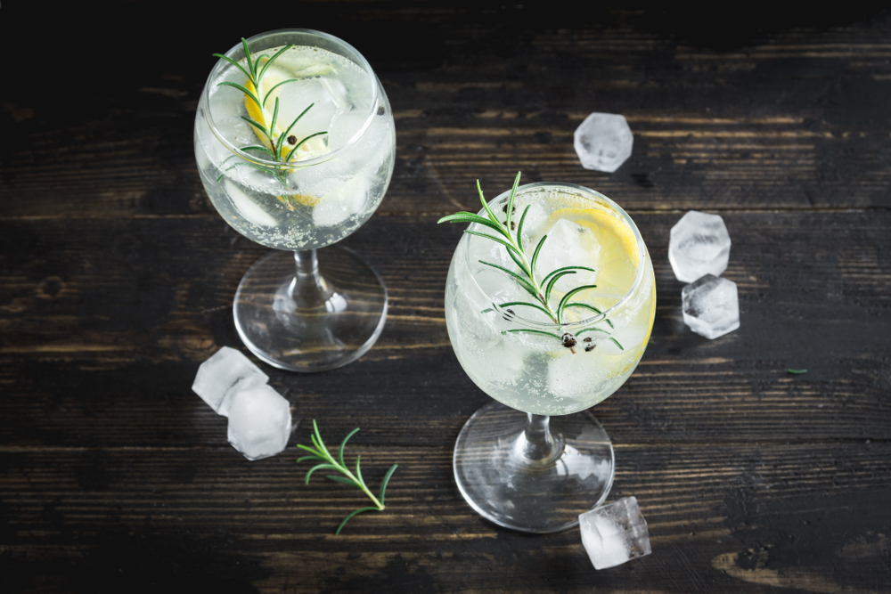 BOSS North Gin Tasting Event